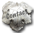 Fig Leaf Contact Icon